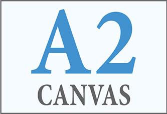A2 Canvas Print