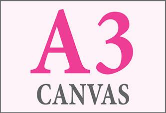 A3 Canvas Print