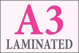 A3 Laminated Printing